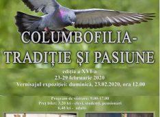 23-29 februarie, Expoziția anuală Columbofilia – tradiție și pasiune