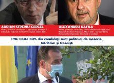 Comunicat de presă: Diferența dintre candidații PSD și cei ai PNL pentru Parlament: Medici specialiști de talie internațională la PSD și politruci de meserie, trădători și traseiști la PNL