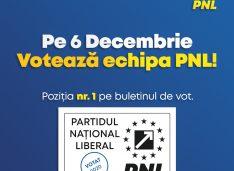 PNL Botoșani: Pe 6 decembrie putem scăpa definitiv de PSD
