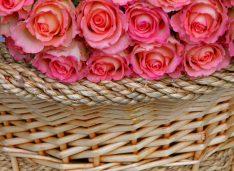 Cosuri cu flori pentru orice ocazie deosebita
